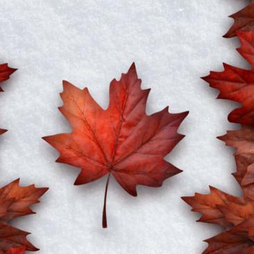 10 expressões e gírias curiosas do Canadá!