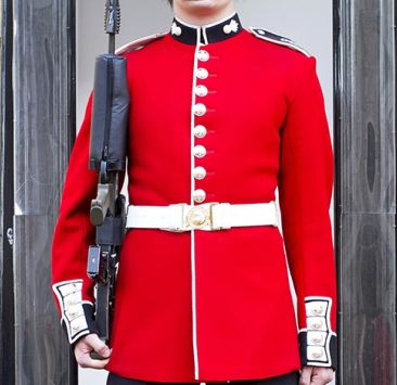 Make way for the Queen's Guard!